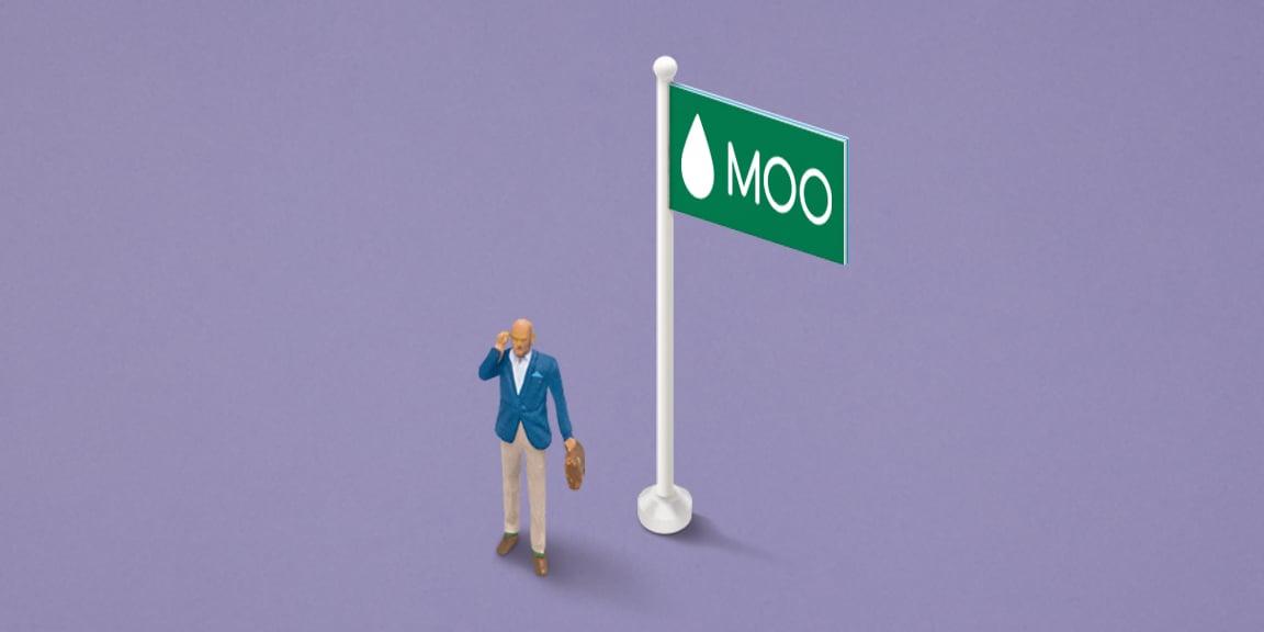 Little Moo